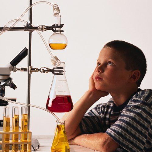 Амурских школьников приглашают на всероссийскую смену «Лаборатория профессий и навыков. PROFI.SKILLS.ЛАБ»