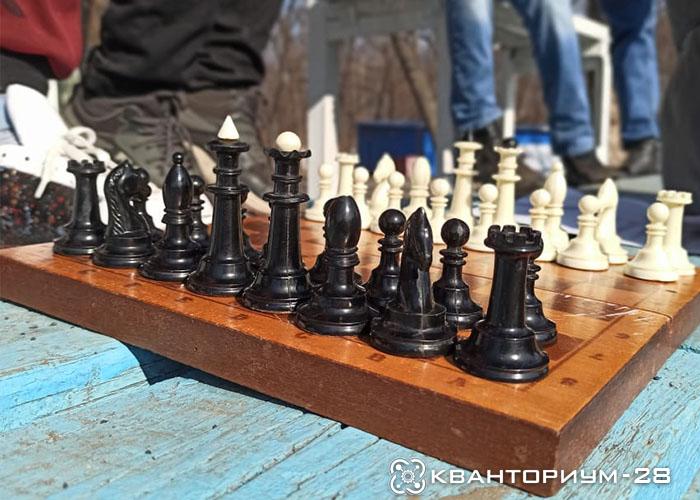 Шахматисты технопарка «Кванториум-28» присоединились к акции «Международный день лесов»