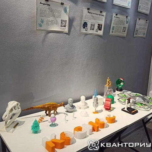 Выставка по 3D моделированию и творческая мастерская открылась в библиотеке имени Чехова в Благовещенске