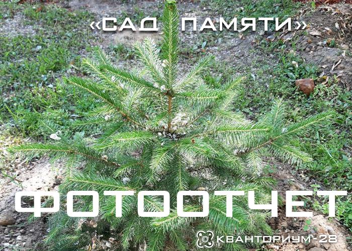 «Кванториум-28» поблагодарили за создание «Сада памяти» на территории технопарка